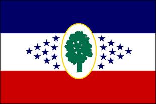 MS Flag Proposal BigRed618
