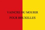Flag of the Liege Volunteers 1830