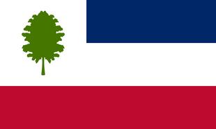 US-MS flag proposal Hans 1