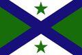 Alternate Michigan State Flag 7C.jpg