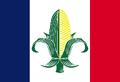 IA Flag Proposal VoronX.png