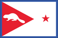 OR Flag Proposal Ed Mitchell.png