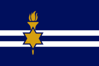 US-IN flag proposal Hans 2