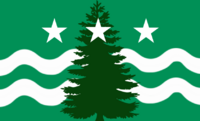 Evergreen Flag 1