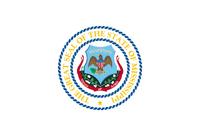 Alternate Flag of Mississippi (Laqueesha) (3)