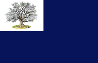 Connecticut - Charter Oak Flag