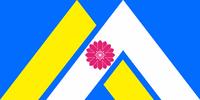 MT Flag Proposal Tibbetts 2