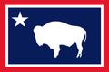 WY Flag Proposal Usacelt.PNG