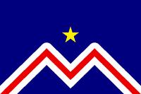 MT Flag Proposal The Professor