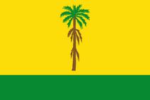 CO-VID flag proposal Hans 1