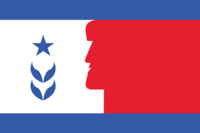 NH flag proposal Ed Mitchell 2