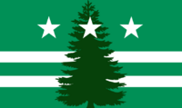 Evergreen Flag 2