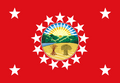 Standard of the Governor of Ohio.png