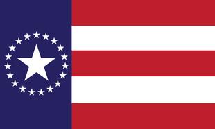 MS Flag Proposal MacManji