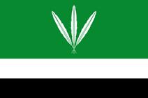 CO-PUT flag proposal Hans 1