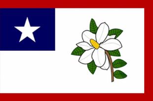 MS Flag Proposal Simmons