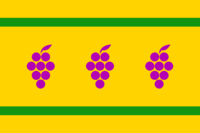 Proposal flag connecticut three grapes