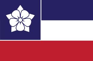 Mississippi New Flag