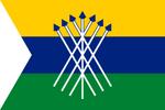 VE-C flag proposal Hans 2