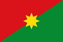 Flag of Casanare Departament