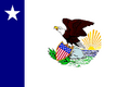 IL Flag Proposal Usacelt.PNG