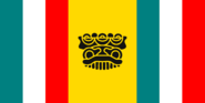 Puebla New Flag 3