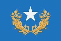Nevada New Flag