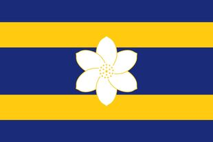 MS Flag Proposal AusPanda92