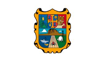 De facto flag of Tamaulipas.