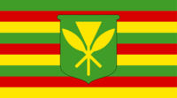 HI Flag Proposal QuantumEcho 3