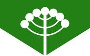 Parana brazil state flag redesign by henriqueovoador-damus47