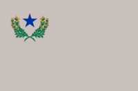 Nevada Silver Flag