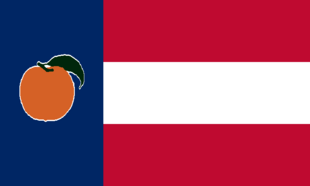 GA Flag Proposal Jack Expo