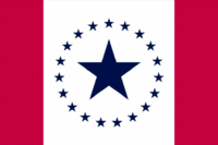MS Flag Proposal Stennis