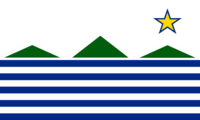 New NH Flag 13