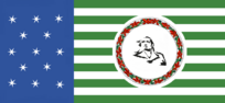 Washington State Flag Proposal No 2 Designed By Stephen Richard Barlow 03 OCT 2014 at 0814hrs cst