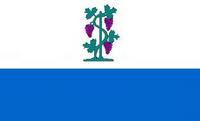CT Proposed Flag VoronX 2