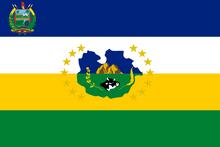 Flag of Guárico (1995-2014)