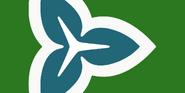 New ontario flag3