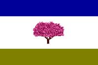 GA Flag Proposal Lord Grattan
