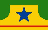 Roraima brazil state flag redesign by henriqueovoador-damtv5p