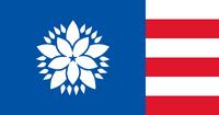 MS Flag Proposal Jensen