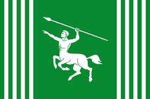 CO-MET flag proposal Hans 1