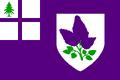 NH Flag Proposal Leoninia.png