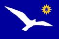 UT Flag Proposal Usacelt.PNG