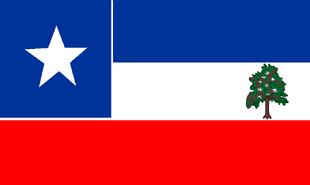 MS Flag Proposal SouthBear