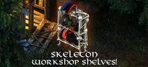 Skullbiker bundle4 workshopshelves