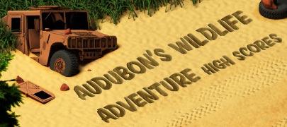 Audubon High Scores