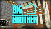 Big Brother2 0