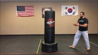 Warrior Wednesday - Front Thrust Kick